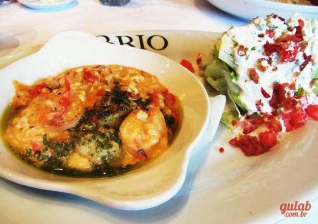 brio3